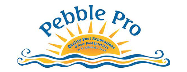 Pebble Pro
